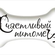 Эконом груминг (стрижка) собак фото