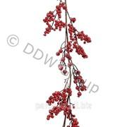 Гирлянда декоративная с красными ягода фото