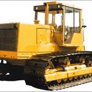 Болотоходный трактор Т-10МБ фото
