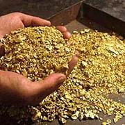 Золото сырье фото