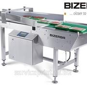 Объединитель потоков упаковок BIZERBA LCE фото