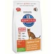 Корм для котов Hill's Science Plan Optimal Care для кошек для поддержания оптимального веса с кроликом 2 кг фото