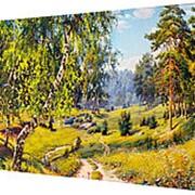 Картина на холсте 30*40 Р10 фото