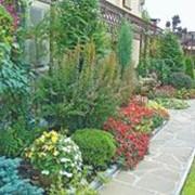 Ландшафтный дизайн сада, приусадебной территории, Львов фото