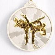 Медаль рельефная таэквондо - серебро фото