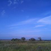 Продается 100 га пахотных земель в Крыму. фото