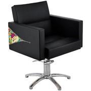 Парикмахерское кресло RIALTO+LUNA BLOCK POPFLUON фото