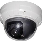 IP камера внутренняя SHANY SNC-222X фото