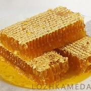 Сотовый мед фото