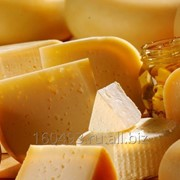 Сыр Голландский ГОСТ 32260-2013 фото