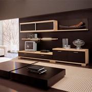 Мебель для гостиной (Арыс) фото