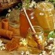 Мед, Мёд пчелиный, Мёд. фото