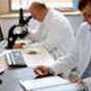 Услуги санитарно-эпидемиологической службы фото
