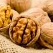 Куплю-продам грецкие орехи фото