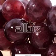 Хранение фруктов в холодильниках фото