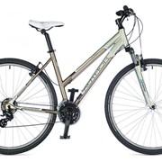 Велосипед Linea 2015 фото