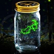 Светлячок в банке электронный зеленый фото