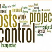Управление Стоимостью (Cost Management) фото