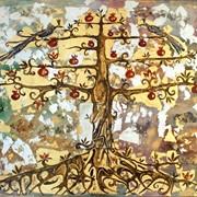 Гранатовое дерево фото