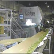 Сортировщики оптические Optyx® Sorter фото