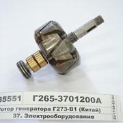 Ротор генератора Г273-В1 (Китай) фото