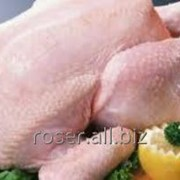 Тушка цыпленка-бройлера фото