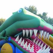 Надувной батут Крокодил фото