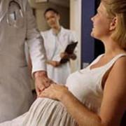 Программы ведения беременности фото