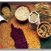 Переработка проса , кукурузы фото