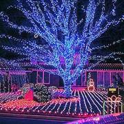 Декоративное, праздничное освещение сада фото