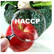 HACCP ИСО 22000 фото