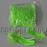 Перья зеленые 5-13 см 100 шт 3661 фото
