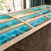 Изготовление морских и пресноводных аквариумов. фото