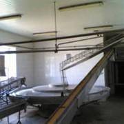 Линия по производству натуральных рыбных консервов, технологическое оборудование для производства рыбных консервов и шпрот фото