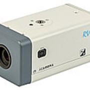 RVi-IPC22DN IP-видеокамера в стандартном исполнении фото