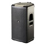 Акустическая система D.A.S. Audio Avant 12A фото