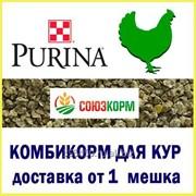 Комбикорм для бройлеров Финишер Purina фото