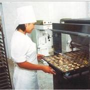 Проектирование и строительство заводов пищевой промышленности фото