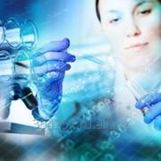 Клинические исследования I – IV фаз фото