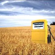 Экспортная поставка биотоплива фото