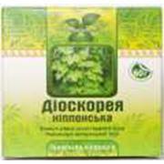 Диоскорея ниппонская препарат фармацевтический лекарственное растение лекарственная трава для понижения давления и уровня холестерина в крови купить фото