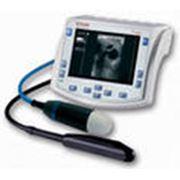 Ветеринарный УЗИ аппарат Tringa VET фото