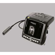 УЗИ ультразвуковой диагностический аппарат Универсальный (для свиноводства и молочного скотоводства) фото