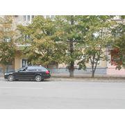 Сдам в аренду помещение магазина в центре луганска фото