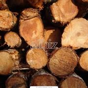 Лесоматериалы Запорожье, Запорожская область фото