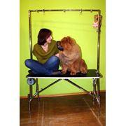 """Стол для груминга """"SIMEX GIANT"""" фото"""