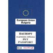 Европаспорт для собак фото