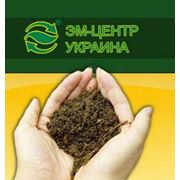 Пробиотики для животных и растений фото