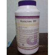 Колистин 6М (Ветеринарные препараты, Ветпрепараты купить, продажа, ассортимент, цена, прайс) Днепропетровск фото
