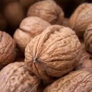 Грецкий орех в скорлупе размерами от 25+ до 30 +, Орех чистый,затарен в полипропиленновые мешки вессом по 25 кг. фото